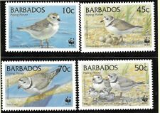 Barbados 1999 WWF Endangered Species Piping Plover 4 Values