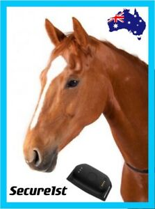 4G horse/ pet/ dog waterproof GPS tracker real live tracking collar GEO fence