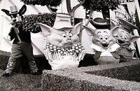 Disneyland 1984 PHOTO Walt Disney It's a Small World Big Bad Wolf 3 Little Pigs