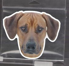 Rodesian Ridgeback 4 inch face magnet for car or anything metal New