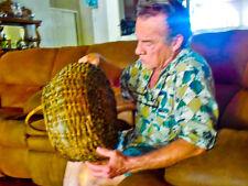 antique old collectible vintage wood woven gathering basket & handle primitive