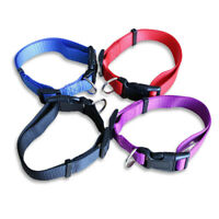 Nylon Dog Collars Adjustable Small Dogs Pet Cat Collar 4 Sizes 4 Colors Necklace