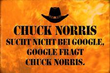 Chuck Norris Spruch 6 Blechschild Schild gewölbt Metal Tin Sign 20 x 30 cm