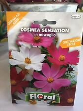 Cosmea Ebay
