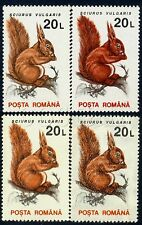 1993/1995 Squirrel,Ardilla,Eichhör nchen,Romania,4903 X,Y,Paper/Wmk. variety,Mnh