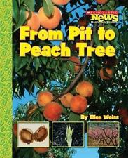 From Pit to Peach Tree (Scholastic News Nonfiction Readers: How Things Grow (Pap