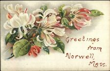 Norwell MA Floral Greeting c1910 Postcard