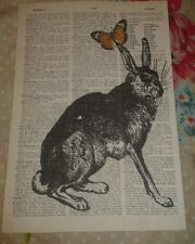 Hare vintage dictionary art nature  animals book page hipster retro wall art