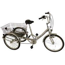 Dreirad in Silber