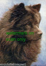 Vintage Art~Black Chow Chow Puppy Dog Profile~NEW Large Note Cards