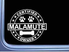 """Certified Malamute L274 Dog Sticker 6"""" decal"""