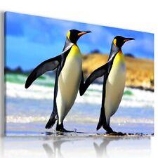 LOVELY BIRDS PENGUIN  Animals Canvas Wall Art AN307 MATAGA . NO FRAME