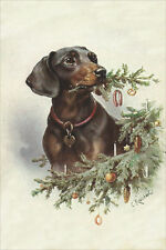 CUTE! Dachshund Dog Carl Reichert 1907 - LARGE New Blank Christmas Note Cards