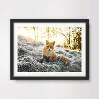 FOX ANIMAL WILDLIFE PHOTOGRAPHY ART PRINT Poster A4 A3 A2 Decor Wall Design !!