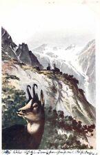 21890/ Künstlerkarte E. Döcker, Im Forst, Gemsen,1900