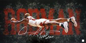 Dennis Rodman Autographed Dive Chicago Bulls 15x30 Photo ASI Proof
