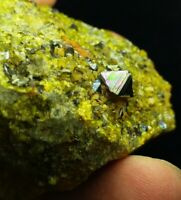 Magnetite Tringles (Record keepers) with green epidote on matrix- Afghanistan