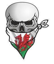 Cranio con Bandana Viso & Drago Gallese Galles Cymru Bandiera Auto Adesivo Vinile Decalcomania