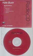 CD--KATE BUSH--MOMENTS OF PLEASURE--PROMO