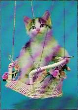 (vkc) Postcard: Cat