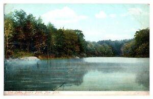Early 1900s The Lake, Bronx Park, New York City Postcard *242