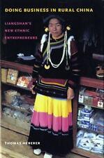 Doing Business in Rural China: Liangshan's New Ethnic Entrepreneurs (Studies on