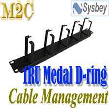 1RU Cable Management Metal D-ring 2RU For Networking Cabinet Server Rack