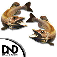 """Tiger Musky - Fish Decal Fishing Tackle Box Bumper Sticker """"5in SET"""" F-0930 D&"""