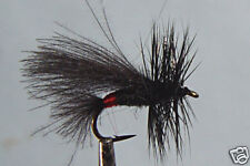 10x Mouche Sèche Sedge Noire H14/16/18/20/22 fliegen
