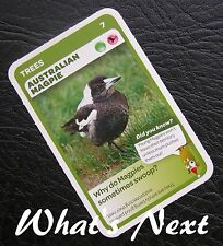 Woolworths<AUSSIE ANIMALS><Series 2 Baby Wildlife>CARD 7/36 TREES Magpie