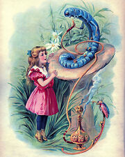 Vintage Alice In Wonderland Lewis Carroll Painting Real Canvas Art Print New