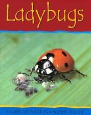 Ladybugs (Minibeasts) by Llewellyn, Claire; Watts, Barrie
