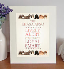 Lhasa Apso 8 x 10 Free Standing BREED TRAITS Picture 10x8 Dog Print Lovely Gift