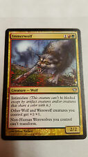 1 x Immerwolf - selten - INNISTRAD - MTG - NM - Magic the Gathering