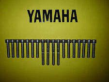 Yamaha Rd 125 Lc rd125lc dt125lc Inoxidable Ss cubierta del motor Allen Tornillo Kit