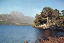 LOCH MAREE Wester Ross Scottish Highlands Unused Real Photo Postcard (1400)