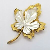 Vintage Maple Leaf Mother of Pearl Shell Brooch Pin Jewelry Gold Tone Shell