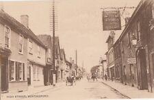 BUNTINGFORD (Hertfordshire): High Street -MAY