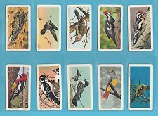 BIRDS - BROOKE BOND CANADA - RARE SET OF 48  CANADIAN  SONGBIRDS   CARDS - 1966