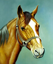 "High Quality Oill Painting ""Horse Portrait #107"" 24""x20"""