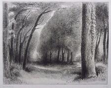 """Pierre DUBREUIL 1891-1970 (élève de Matisse) gravure signée Ed 40 """"Bois d'Amour"""""""