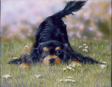Cavalier King Charles Spaniel Dog Puppy Cute Playing Greeting Birthday Card