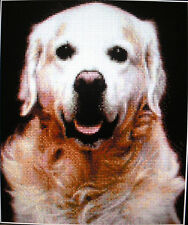 GOLDEN RETRIEVER ~ NEW Counted Cross Stitch KIT (Larger Design) #ML55