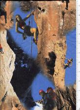 realistic ~ Rock Climbing ~ fabric mountain rjr
