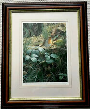 Steven Townsend Framed Signed Limited Edition Print Robin On A Bramble 599/600