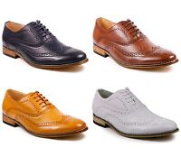 Men's Wing Tip Perforated Lace Up Oxford Dress Shoes