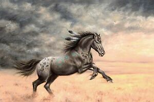 Horse painting Appaloosa horse Artwork stretched Canvas Giclee Print