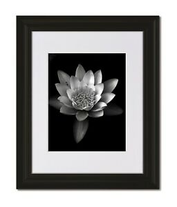 16x20 Classic Curved Black Frame with Glass & Single White Mat for 11x14