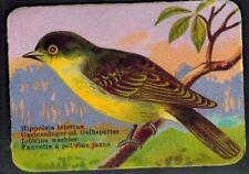 Chromo  - Fauvette Jaune -gaufre - Oiseau - Bird - Faune - Réf.164
