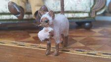 Dollhouse Miniature Artisan Signed Furred Sculpture Cat Kitten Alice Zinn 1:12